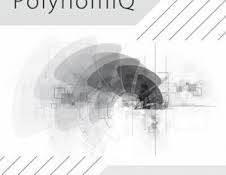 PolynomiQ – Languages