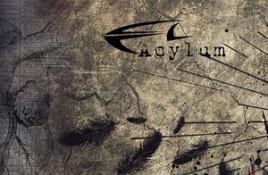 Acylum – Hate