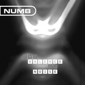 Hard to get Numb tracks compiled on vinyl/CD'The valence of noise'