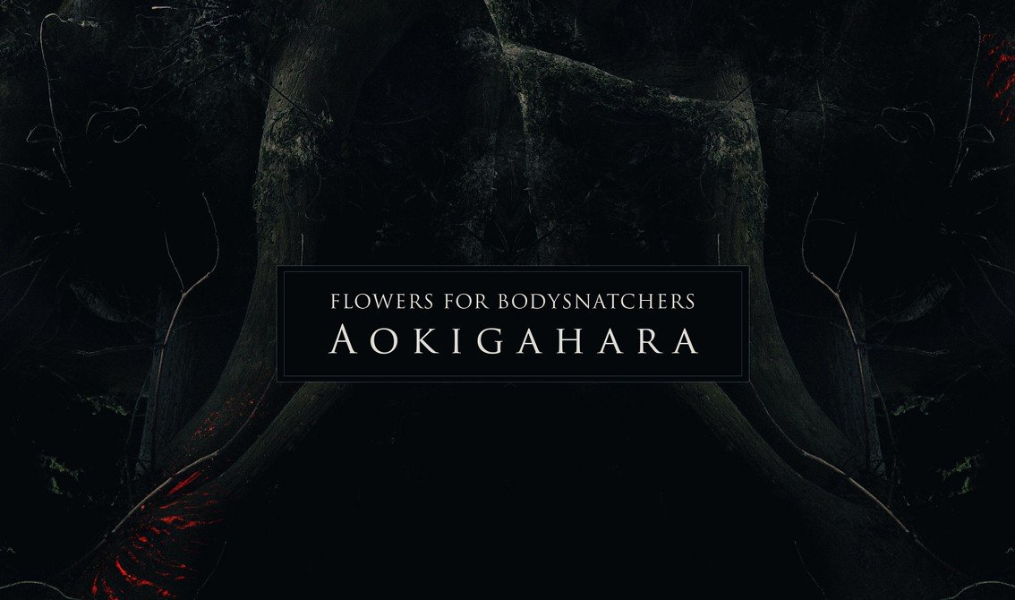 Flowers for Bodysnatchers joins dark ambient label Cryo Chamber and releases'Aokigahara'