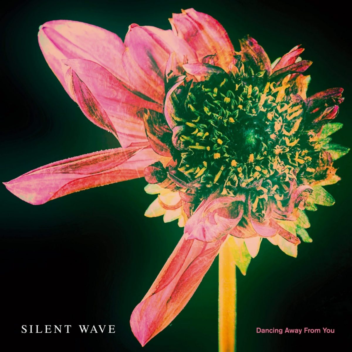 Silent Wave - Dancing Away From You (single cover)