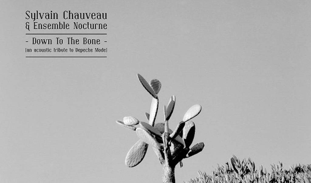 Depeche Mode tribute'Down to the Bone' by Sylvain Chauveau gets vinyl reissue 10 years after original release - order your copy here