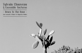 Depeche Mode tribute 'Down to the Bone' by Sylvain Chauveau gets vinyl reissue 10 years after original release - order your copy here