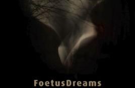 FoetusDreams – Brouillard