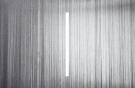 Samuel Kerridge – Fatal Light Attraction