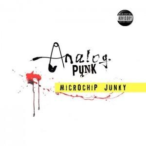 Microchip Junky