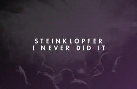 Steinklopfer – I Never Did It