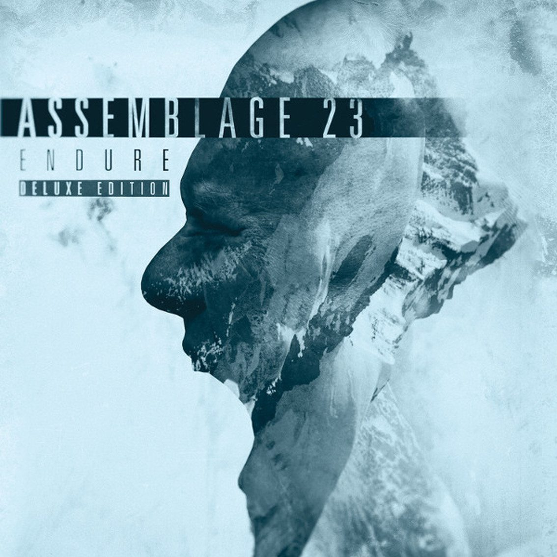 Assemblage 23 to prepare new'Endure' album as a deluxe 2CD set, vinyl and normal CD