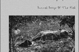 The Elderbranch Campaign – Secret Songs Of The Field