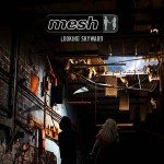 Mesh – Looking Skyward