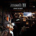 Mesh – Looking Skyward
