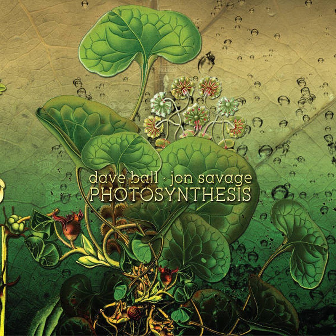 Dave Ball (Soft Cell) and Jon Savage release soundscape album'Photosynthesis'