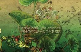 Dave Ball & Jon Savage – Photosynthesis