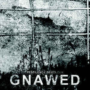 Gnawed