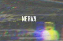 Nerva – Nerva