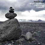Null Device – While You Were Otherwise Engaged