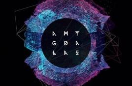 Sixth Minor – Amygdalae