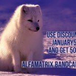 Alfa Matrix launches massive sale action on Bandcamp: 50% off !