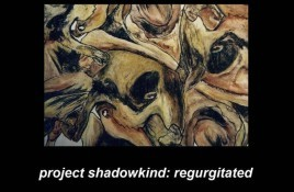 Project Shadowkind – Regurgitated