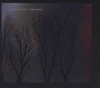 Roman Leykam – Impressions