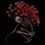 Finnish neo folk act Tenhi sees 'Folk Aesthetic 1996-2006' reissued as a 3 LP vinyl set