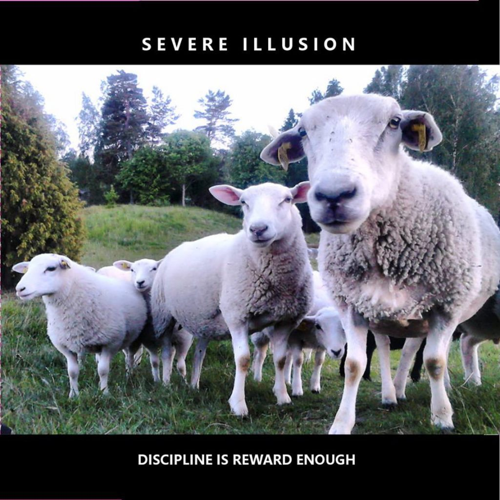 Severe Illusion has 2003 album'Discipline Is Reward Enough' re-released as 2cd set