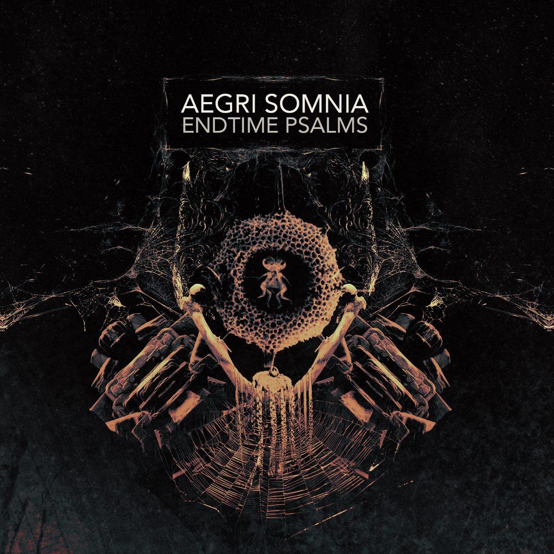 2nd album Aegri Somnia ('Endtime Psalms') released on Cryo Chamber