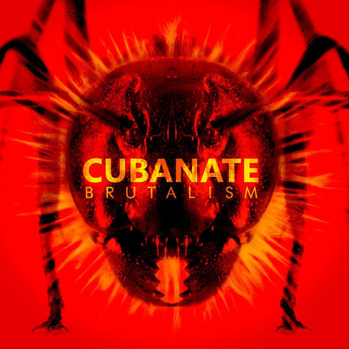 Cubanate to release best of album'Brutalism'