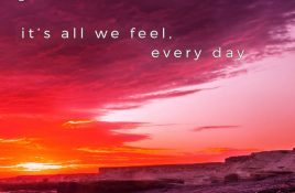 Phenotract – It's All We Feel Every Day