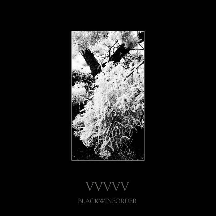 Black Wine Order – VVVVV