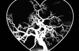 Hexheart – Midnight On A Moonless Night