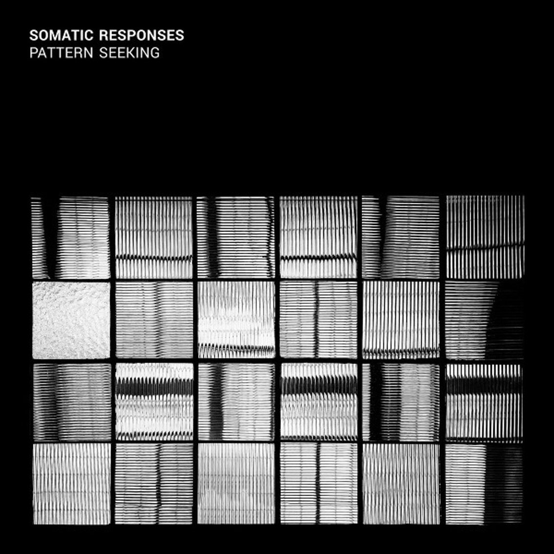 Somatic Responses choose for 'Pattern Seeking'