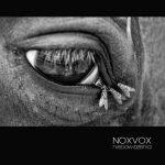 Noxvox – Niedowidzenia