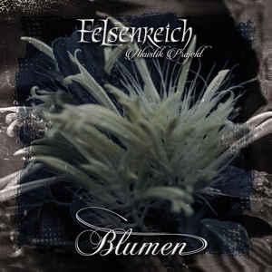 Felsenreich – Blumen / Akustik Projekt