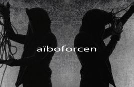 Aiboforcen - Interview