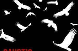 Caustic – American Carrion