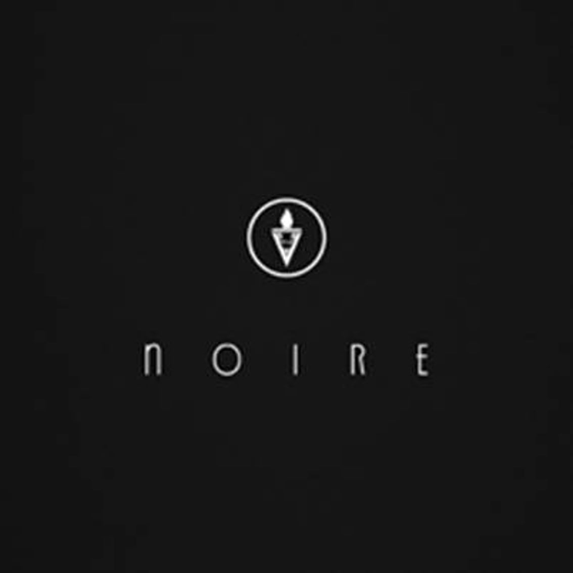 VNV Nation releases new album'Noire' as a digipak and as a limited edition double black vinyl edition
