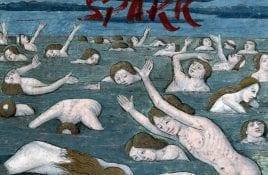 Lizard Pool – Spark