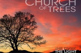 Church Of Trees – The Dark & The Light