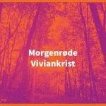 Viviankrist – Morgenrøde