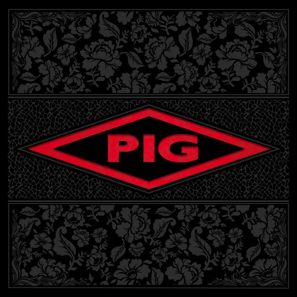 PIG to launch brand new cover album in June:'Candy'