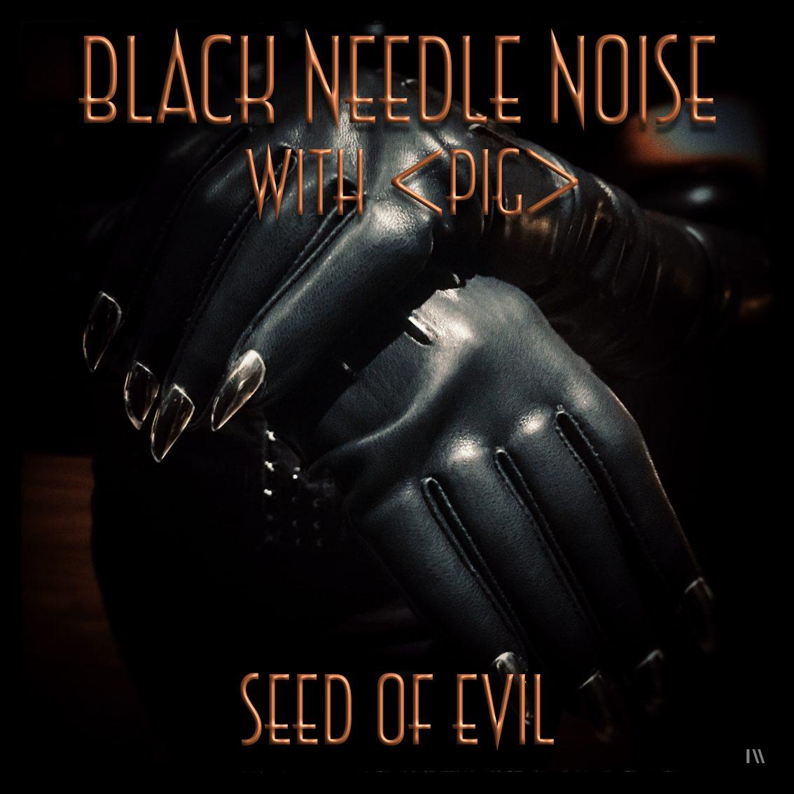 PIG vocalist Raymond Watts featured on new single Black Needle Noise - listen here