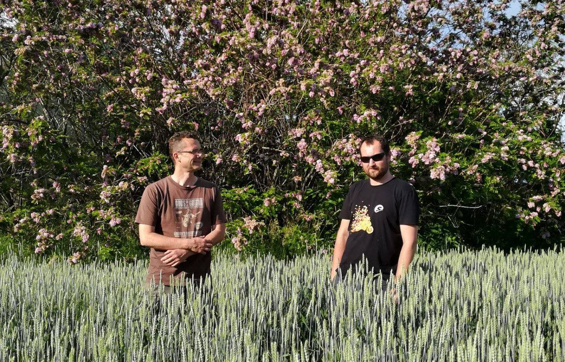 Slovakian dark synthpop act Imiafan release 12 inch on at Falco Invernale Records