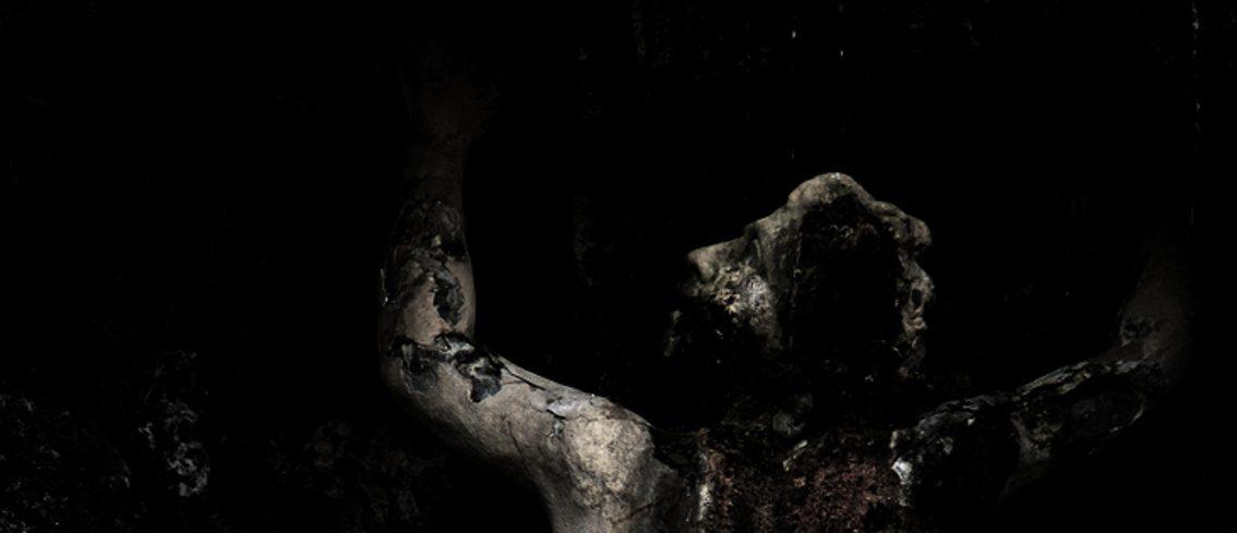 Februum covers Deftones' classic track 'Be Quiet and Drive (Far Away)'