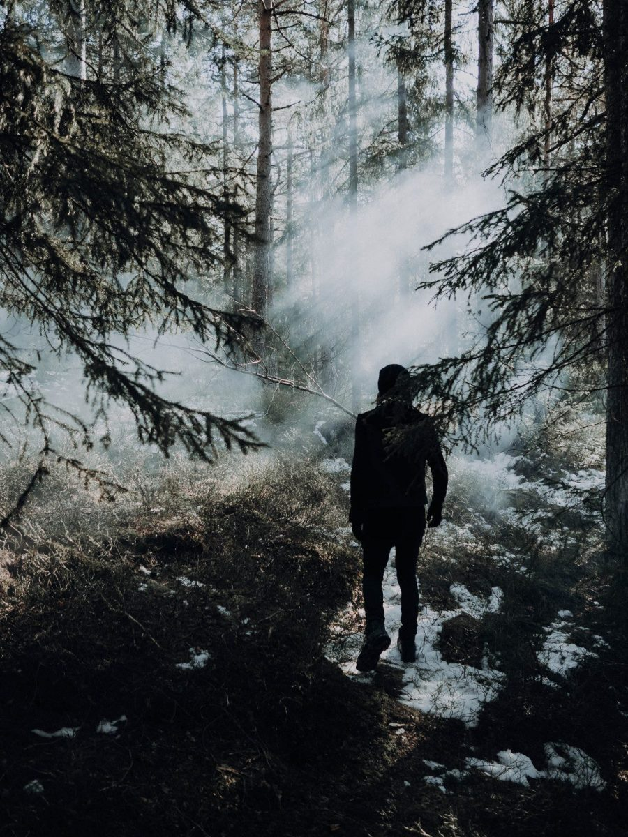Norwegian electronica wave / ambient act Lights A.M launches debut album - interview