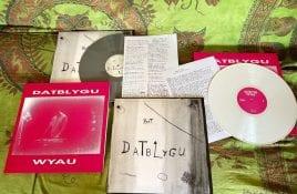 Legendary Welsh experimental duo Datblygu - Kraftwerk with a hangover - reissue first two albums on vinyl
