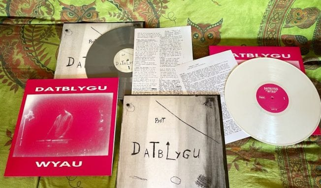 Legendary Welsh experimental duo Datblygu - Kraftwerk with a hangover - reissue first two albums on vinyl