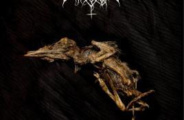 Nordvargr releases vinyl edition of 2008's 'Pyrrhula' album